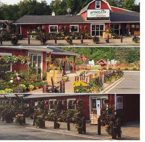Green Life Market in Andover NJ