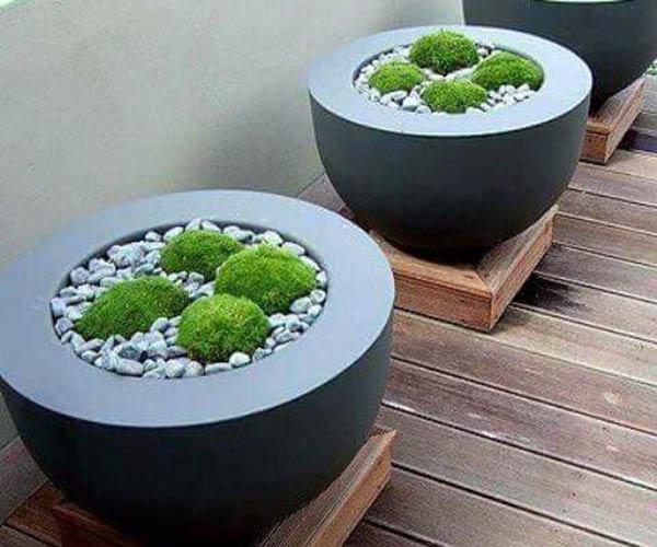 Low maintenance planter boxes