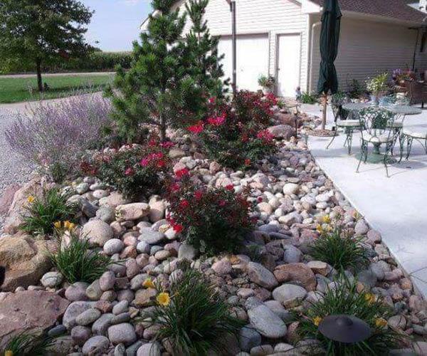 Rock Garden in MArin County