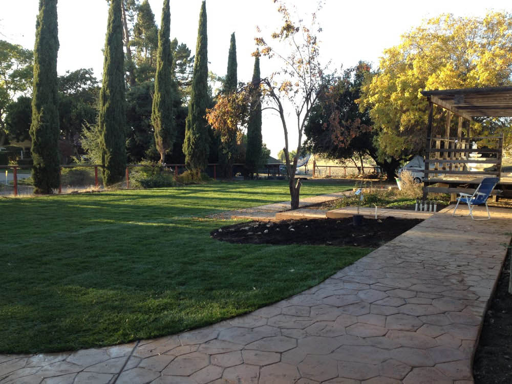 Landscape design near Cupertino, Los Altos