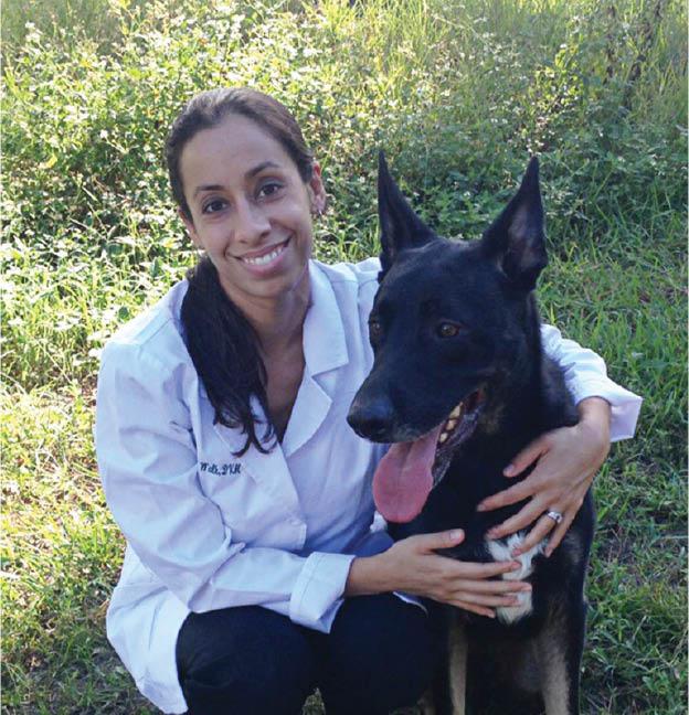 vet near me  affordable vet care veterinarian near me save on pet care