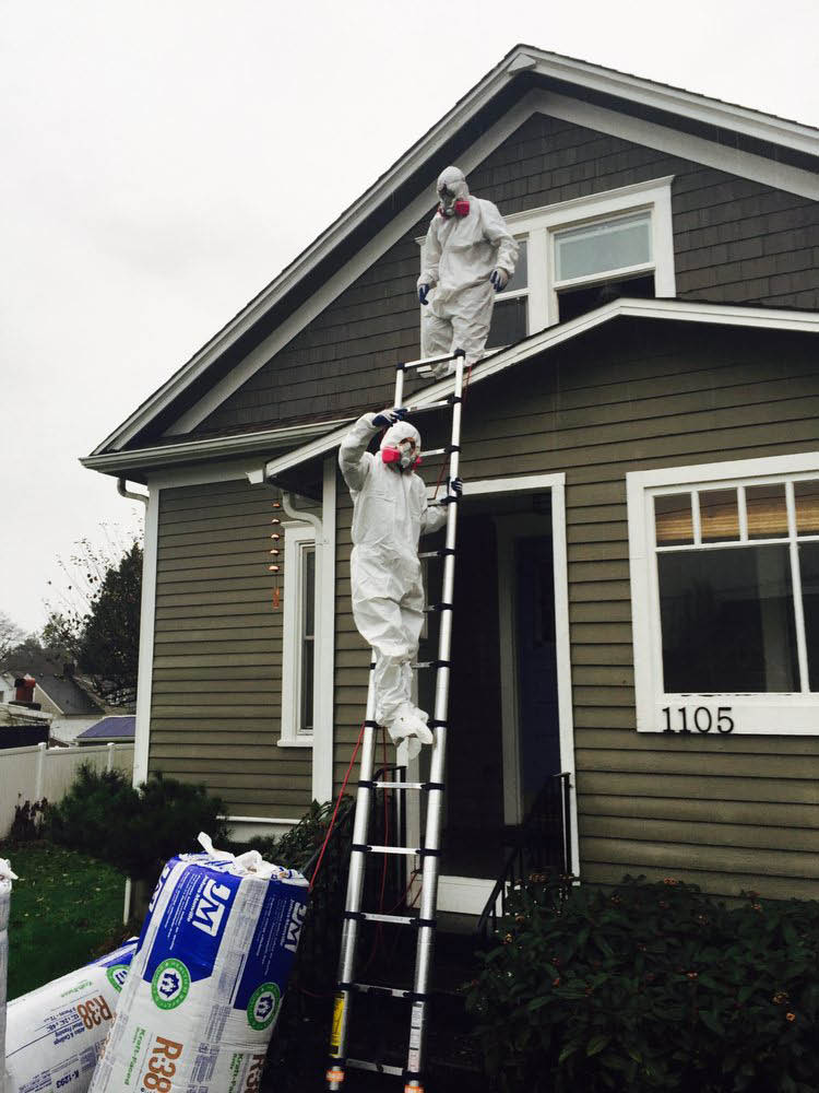 Happy Healthy Home - installing new insulation into an attic in a Seattle, WA home - crawlspace cleaning - crawlspace insulation