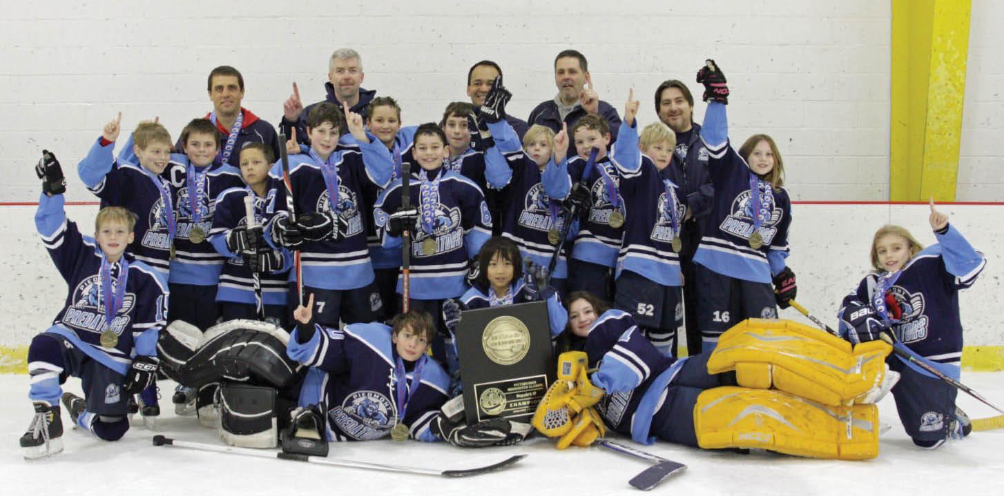Hockey teams, hockey camps in Haymarket, VA