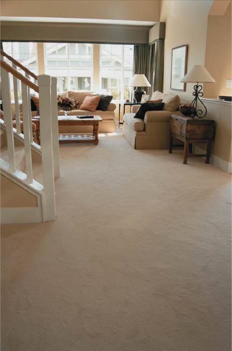 Carrington Carpet Care provided carpet cleaning in CO