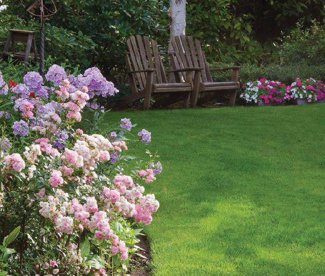 Hop Landscaping - Lawn Services - Seattle landscapers - lawn care