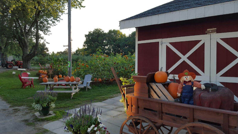 Picture of Awe's Apple Farm in Hales Corners, WI