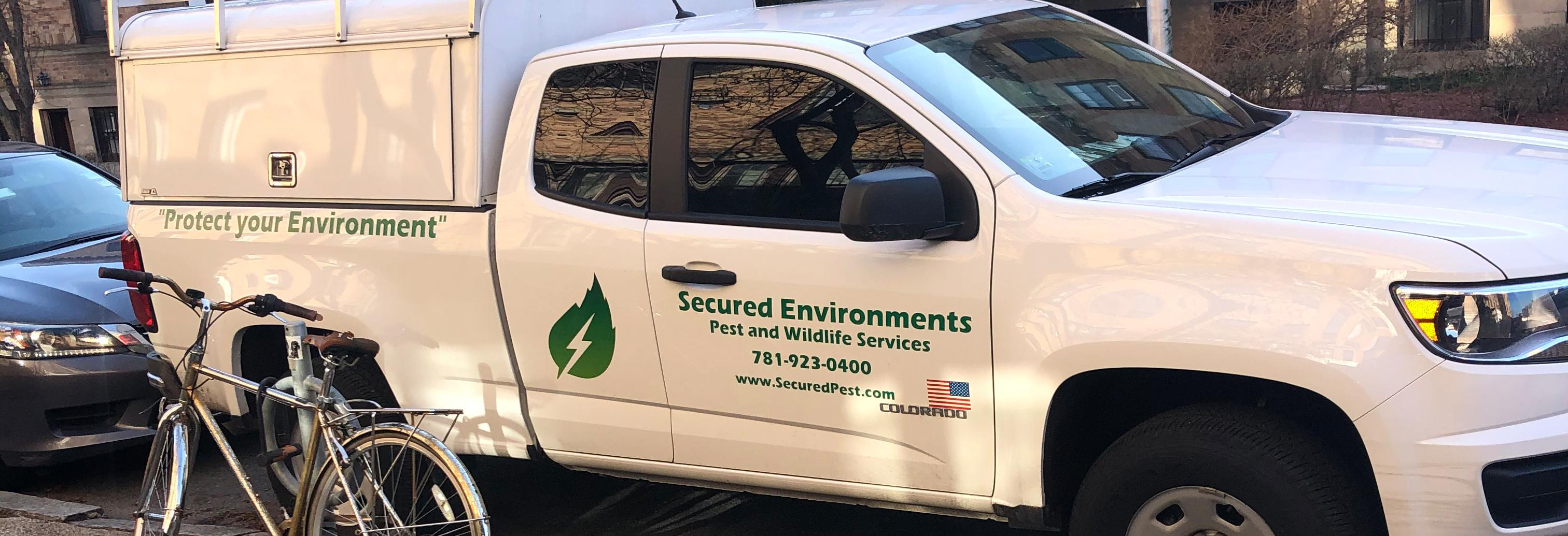 Hire a  professional to solve your pest or wildlife problem.