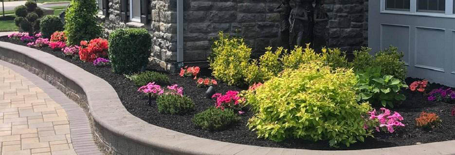 image lawn care,landscaping services,landscapers near me,lawn care,hardscape,