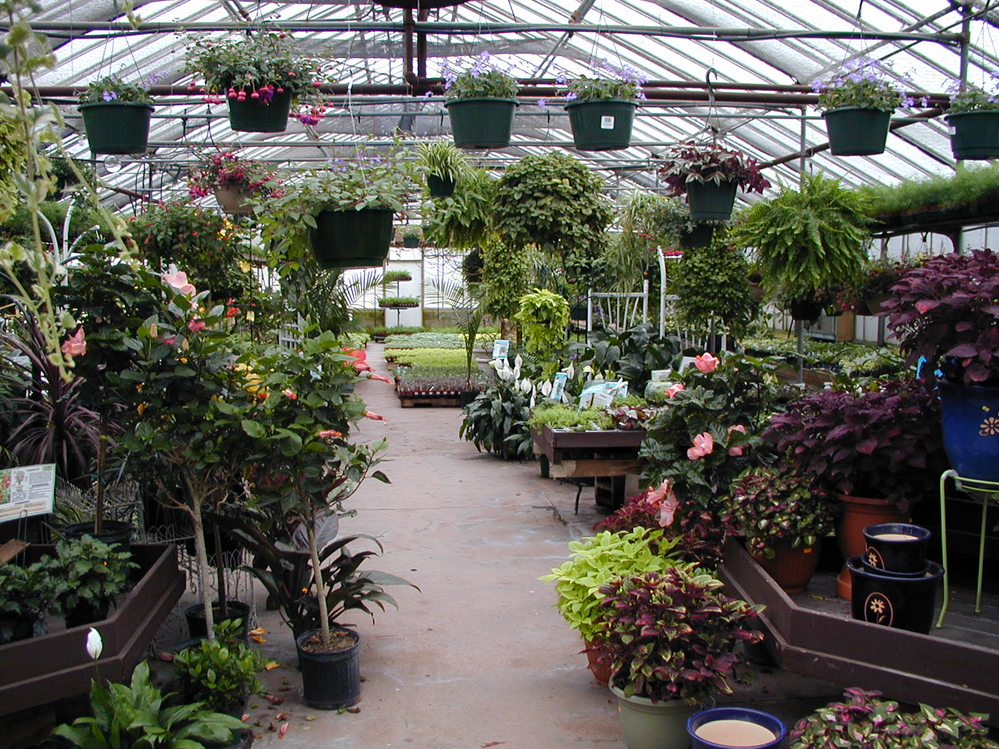 Come in and warm up in our indoor greenhouse that's the size of a football field.  Indoor house plants, cacti, blooming plants, seeds and much more.