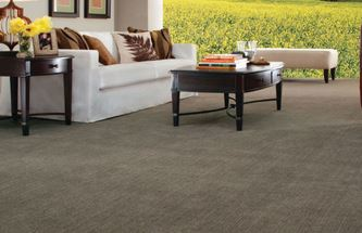 photo of carpet from Karen's Advance Floors in Clarkston, MI