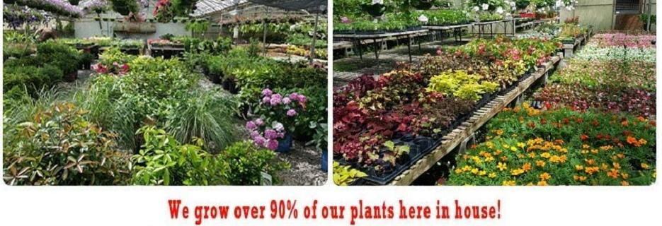 Kelli Green Garden Center in Marietta, GA Banner ad