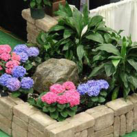 Local Landscape Vendors with lawn and garden ideas