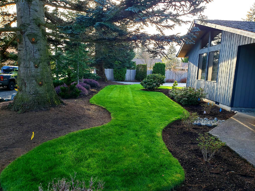 Lawn maintenance and landscaping by Tyler's Lawn Salon - Everett landscapers - landscapers near me - landscaping contractors near me - professional landscape company - landscaper coupons near me - lawn care coupons near me