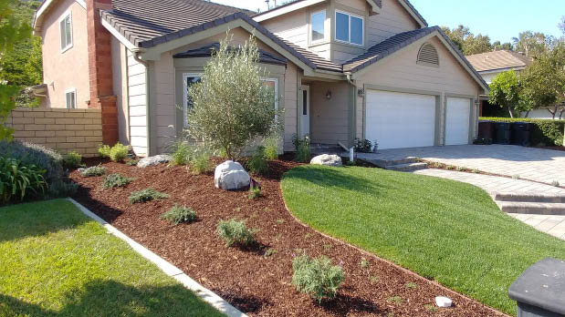 front yard landscaping at a home in California