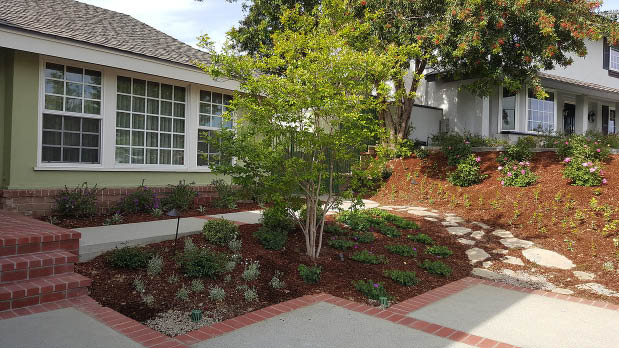 house with landscaped trees and flowers out front