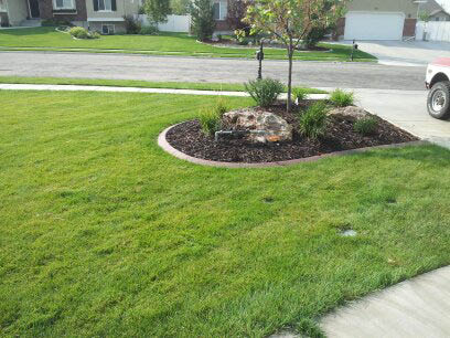 Professional lawn edging and design