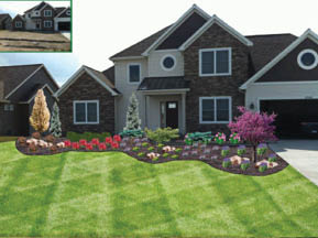 Before and after new construction lawn.
