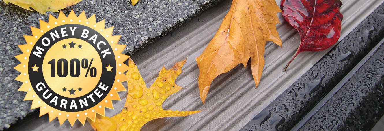 Leafless in Seattle main banner image - Mastershield Gutter Protection - Gig Harbor, WA