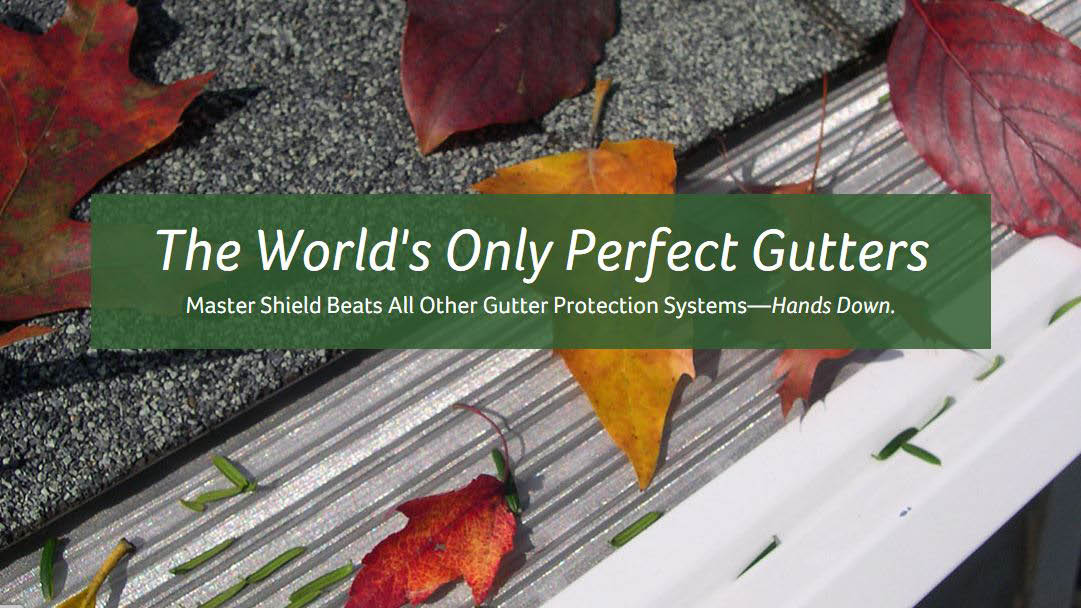 MasterShield Gutter Protection - the world's only perfect gutters - Leafless in Seattle
