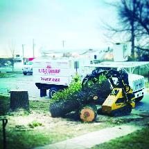 Liscombe stump grinding truck