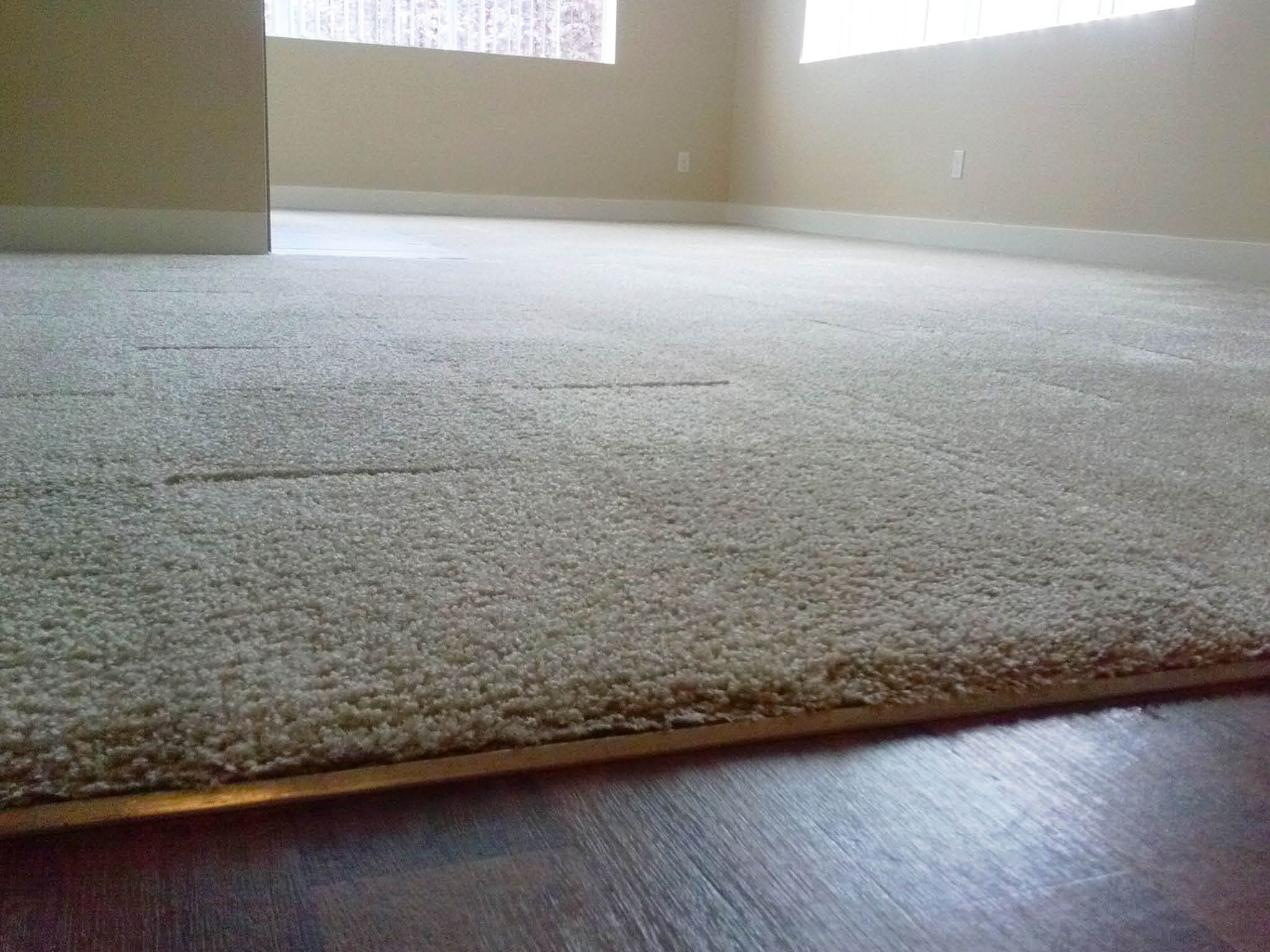 Sanchex Carpet Cleaning - Lynnwood, WA - carpet cleaners - professional carpet cleaning - carpet installation - carpet repiar