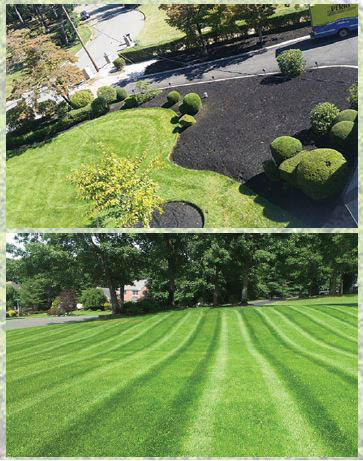 Professional landscapers in Tacoma, Washington - landscaping in Tacoma - MG Landscape - lawn care - lawn maintenance - lawn mowing