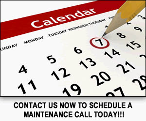 Make an appointment with Mark's Japanese European Auto today! - schedule automotive service