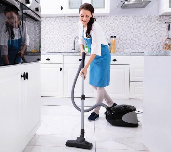 maid service fl