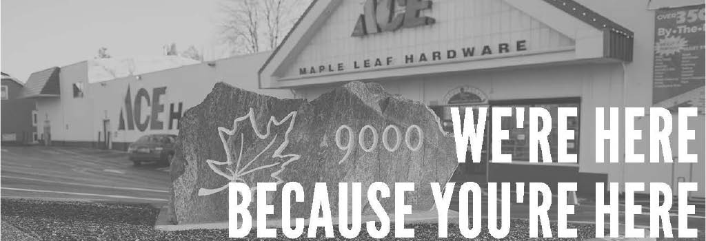 Maple Leaf Ace Hardware main banner image - Seattle, WA