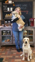 photo of woman holding dog next to Golden Retriever at Maple Lane Kennels Inc in Ortonville, MI