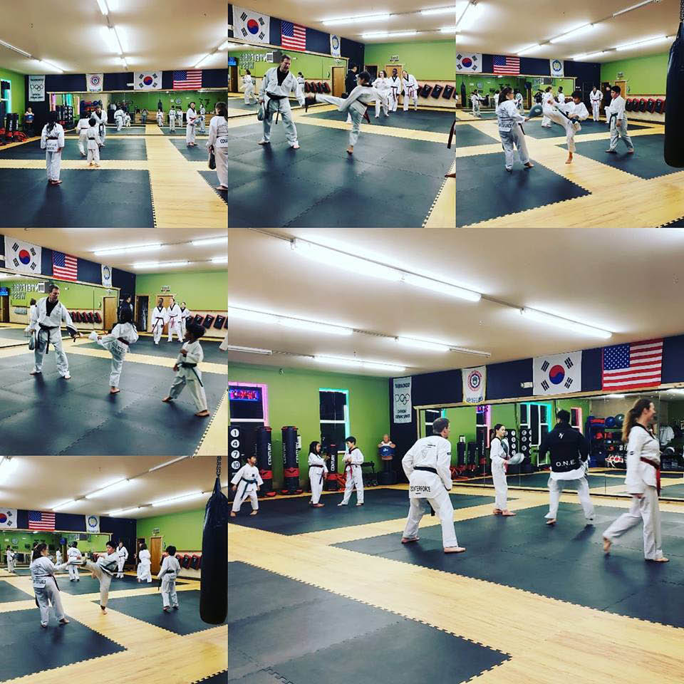 Counterforce Taekwondo West Seattle assists in the development of responsible, independent, confident, self-sufficient and productive individuals through quality Taekwondo instruction
