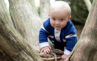 little boy playing in tree