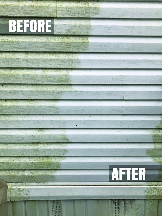 Before and after algae removal by McCoy Fresh Lookz