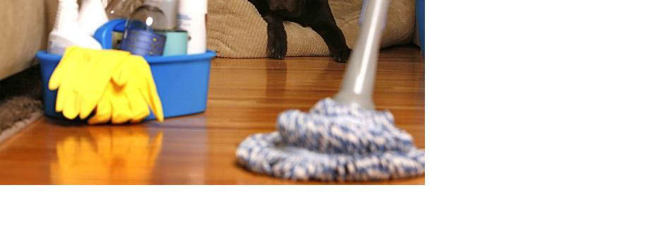 Housekeepers, move in move out cleaning, maid service coupons, fully bonded & insured maids