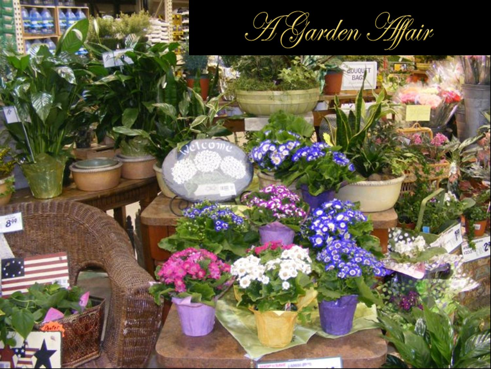 Photo of beautiful flowers, plants and balloons from A Garden Affair at Mihelic's Glenshaw Shop N' Save