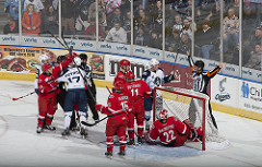 Picture of live Milwaukee Admirals game with the players piling up at the home rink at the Bradley Center in Milwaukee, WI