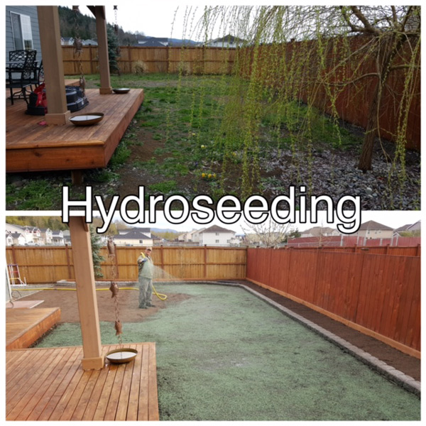 Minh's Landscaping - Puyallup, WA - hydroseeding - reseeding - professional landscapers in South Hill