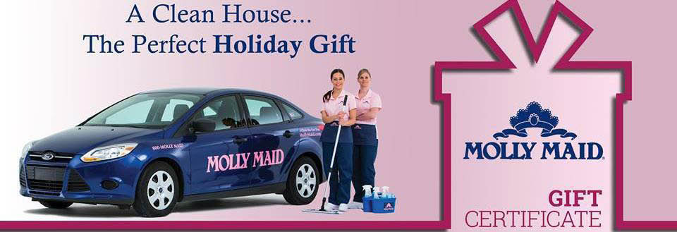 Molly Maid of NW Houston, TX Banner ad