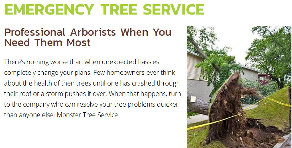 Monster Tree Service Emergency Tree Service