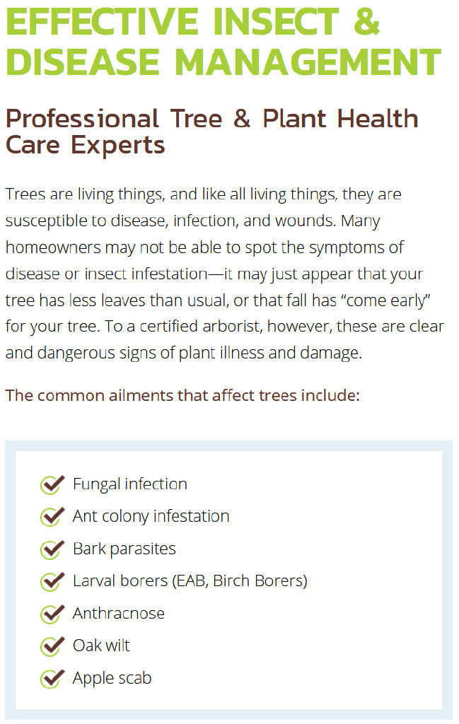 Monster Tree Service Insect & Disease Management