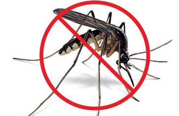 Mosquito Control servicing Northern Virginia and Fredericksburg, VA