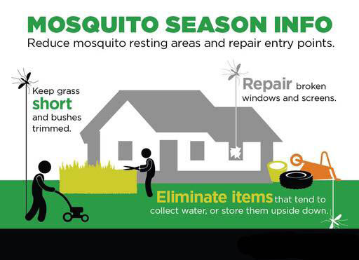 Mosquito Prevention Season eliminate pests insect