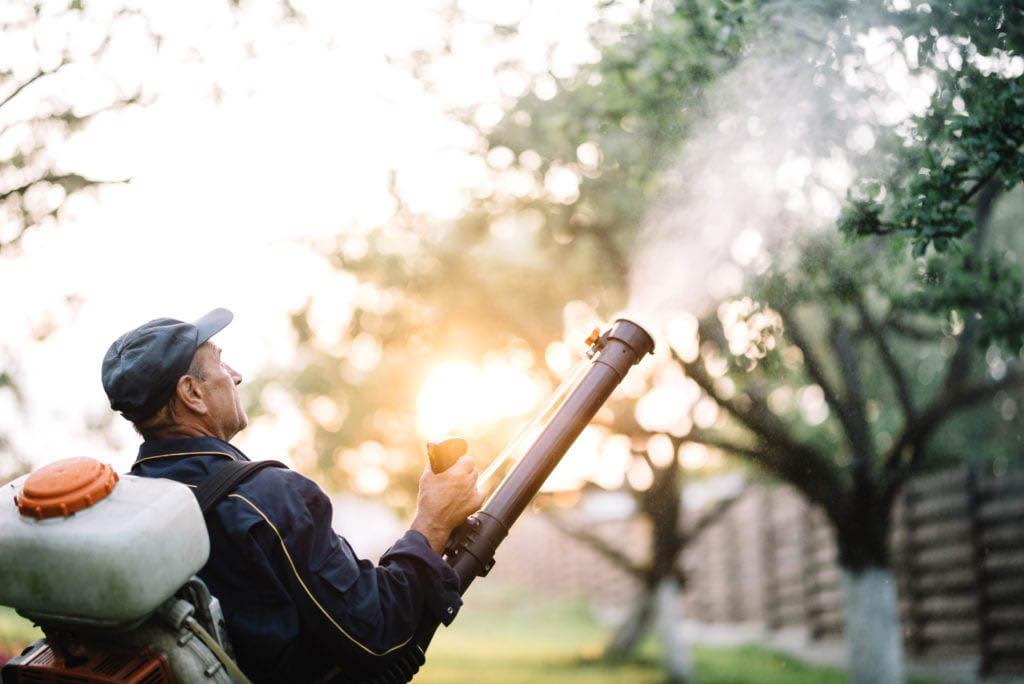 Moquito Spray Tree prevent kill outside