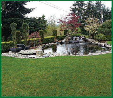 Mr. Ho's Gardening & Landscaping - beautifully landscaped lawn around a lake with a fountain - Des Moines, WA