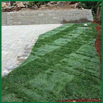Lawn mowing by Mr. Ho's Gardening & Landscaping in Des Moines, Washington - landscapers near me