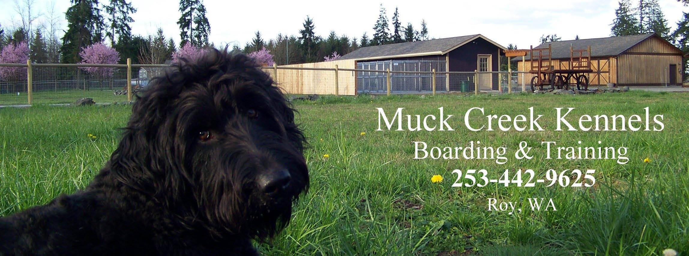 Muck Creek Kennels - dog boarding - dog training - dog obedience boot camp - Roy, Washington