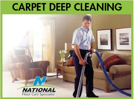 professional carpet cleaning services National Carpet Cleaning wesley chapel, fl