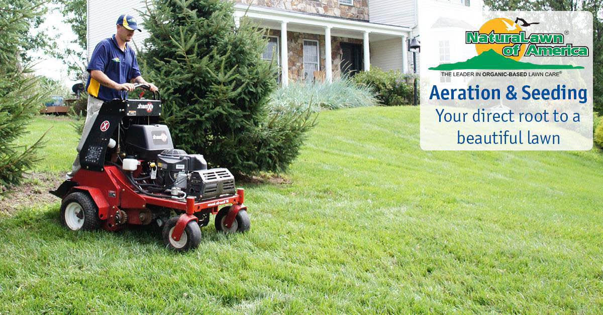 naturalawn of america,lawn care,grass cut,weed trim,yard work,delaware yard work,mulch,discount,deal