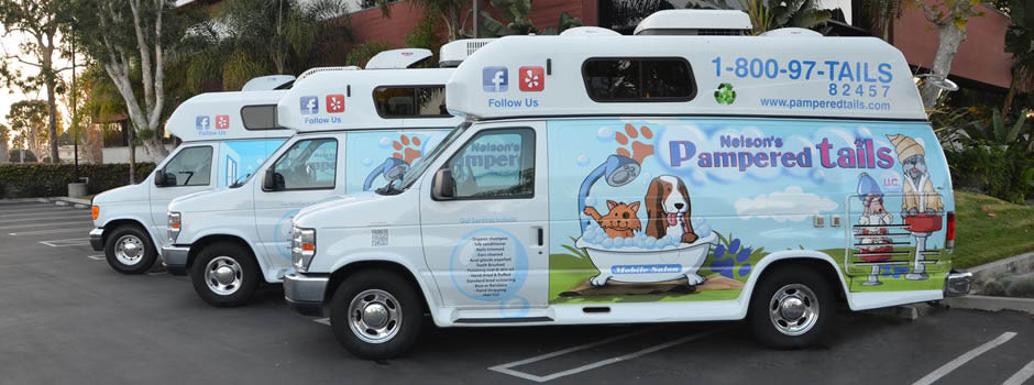 Nelson's Pampered Tail Dog Grooming Fleet near Ladera Heights