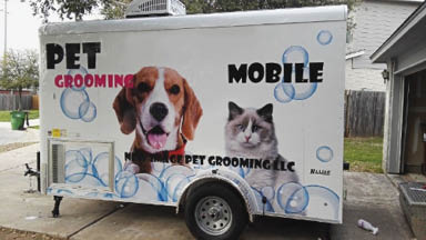 Pet grooming near Sugar Land, Bellaire